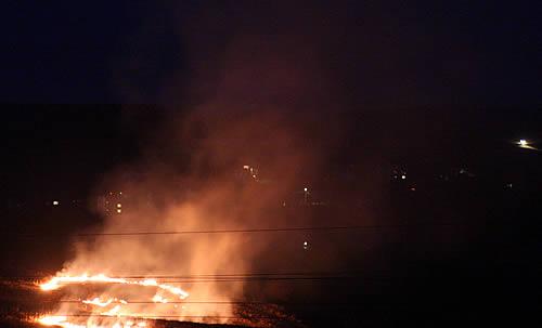 Foto: Ponad 400 pożarów traw od początku kwietnia