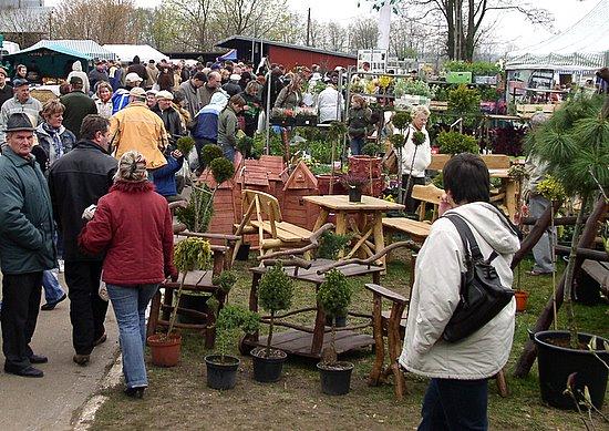 Foto: Ogrodnicze Hity z Zambrowa i Łomży