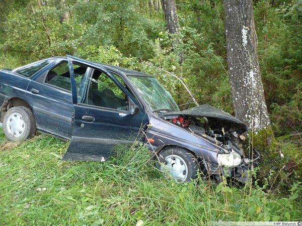 Foto: Ford uderzył w drzewo