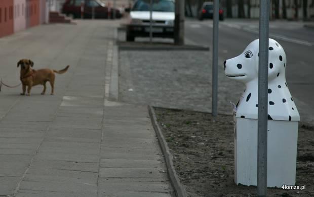 Foto: Sprzątanie po psie łatwiejsze...
