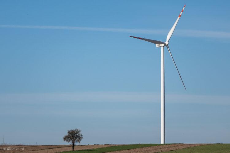 Foto: Warunki dla wiatraków są u nas niekorzystne...