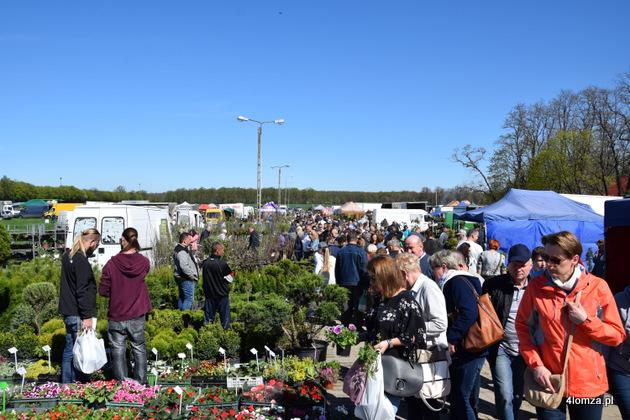 Foto: Tysiące roślin w Szepietowie. Wiosenne Targi Ogrodnicze i Targi Pszczelarskie za nami
