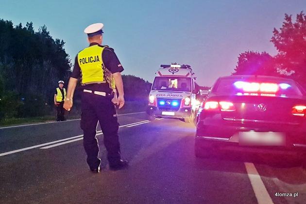 Foto: Kolejny łoś na drodze