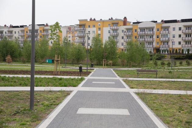 """Foto: Problemy z """"rewitalizacją"""" Parku"""