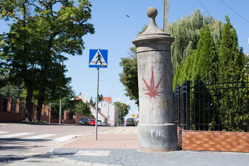 Foto: Trawa, trawka i dopalacze w Łomży