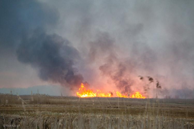 Foto: Biebrza w ogniu... Nadal.