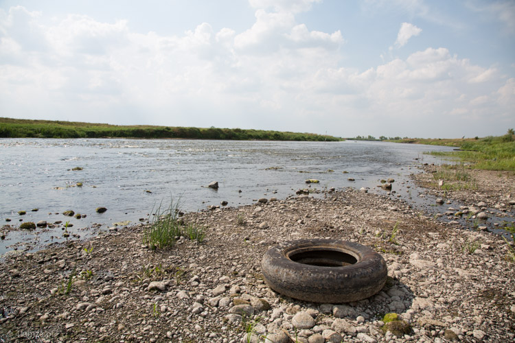 Foto: Niski poziom wody na Narwi i Biebrzy